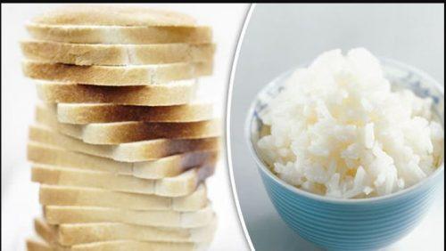 roti putih nasi